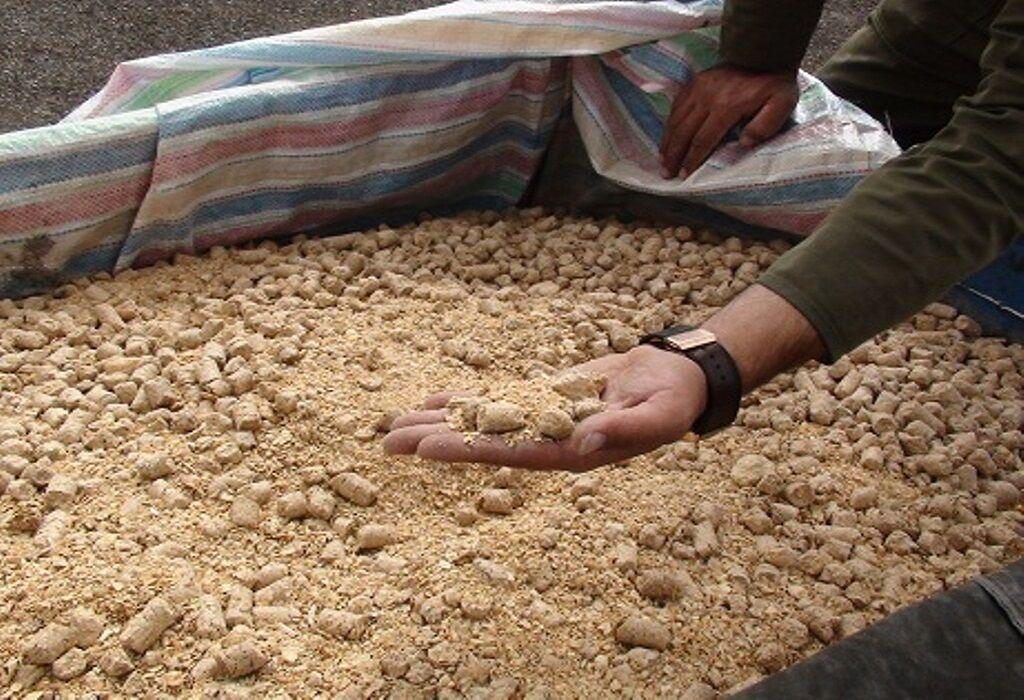 کشف ۱۰۶ تن نهاده دامی قاچاق در بیلهسوار