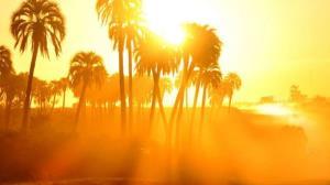 پیشبینی افزایش گرما در روزهای بیبرقی بوشهر