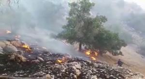 اعزام نیرو، تجهیزات و بالگرد آبپاش جهت اطفای حریق جنگلهای نارک گچساران