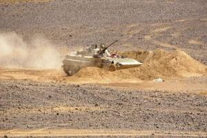 پیشروی ارتش یمن در استان «البیضاء»