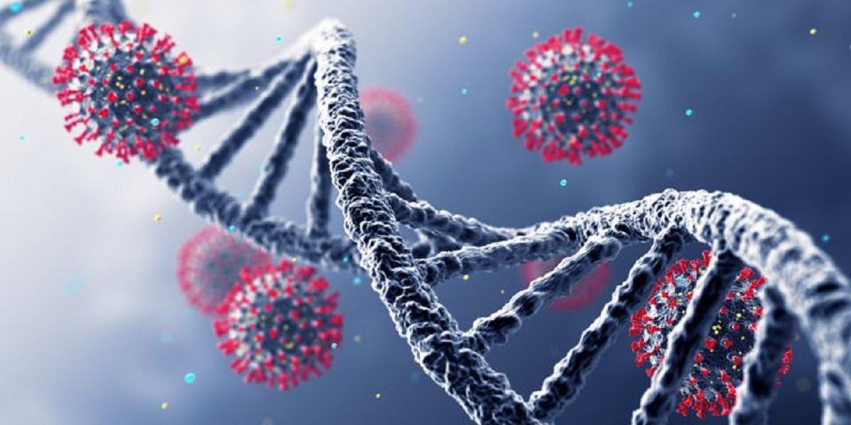 کرونا/ سویه لامبادا ویروس کرونا چیست؟
