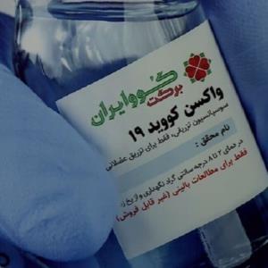 جهانپور: بیش از ۴۰۰ هزار دز واکسن برکت تزریق شده است