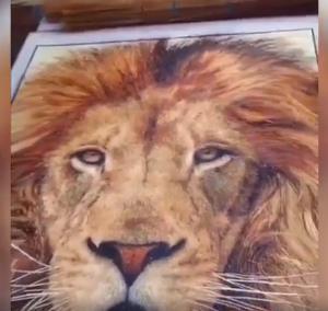 هنرنمایی خیره کننده با چوب های جارو