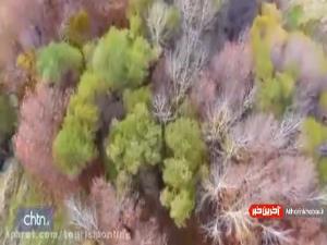 جلوه گری طبیعت در بیضای فارس