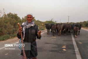 «آب معدنی» به چه کار خوزستان میآید؟