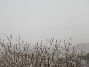 هوای اراک و شازند همچنان آلوده