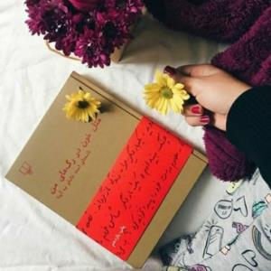 بخشی از کتاب/ امید بزرگی بود که اقلاً روزی یک بار تو را ببینم