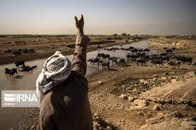 راهکارهای موقت برای گذر از تابستان خوزستان