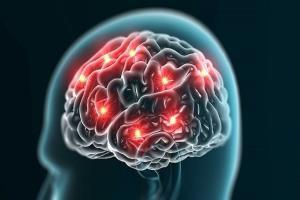 گرسنگی طولانی عامل کاهش قدرت حافظه