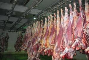 گران شدن گوشت واقعیت دارد؟