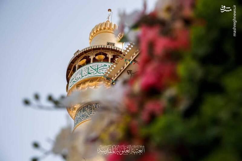 عکس/ گلآرایی حرم امیرالمومنین علی(ع)