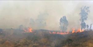 آتش سوزی در شمال فلسطین اشغالی و اخلال در برقرسانی