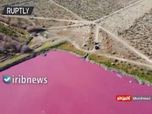 آلودگیهای صنعتی آب دریاچهای در آرژانتین را صورتی کرد
