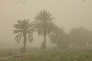 فرماندار: ۱۵۰ روستای ریگان در محاصره گردوغبار قرار دارد