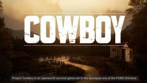 تصاویری جدید از بازی PUBG Cowboy منتشر شد