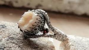 زیورآلات ساخته شده از دندانهای مردگان
