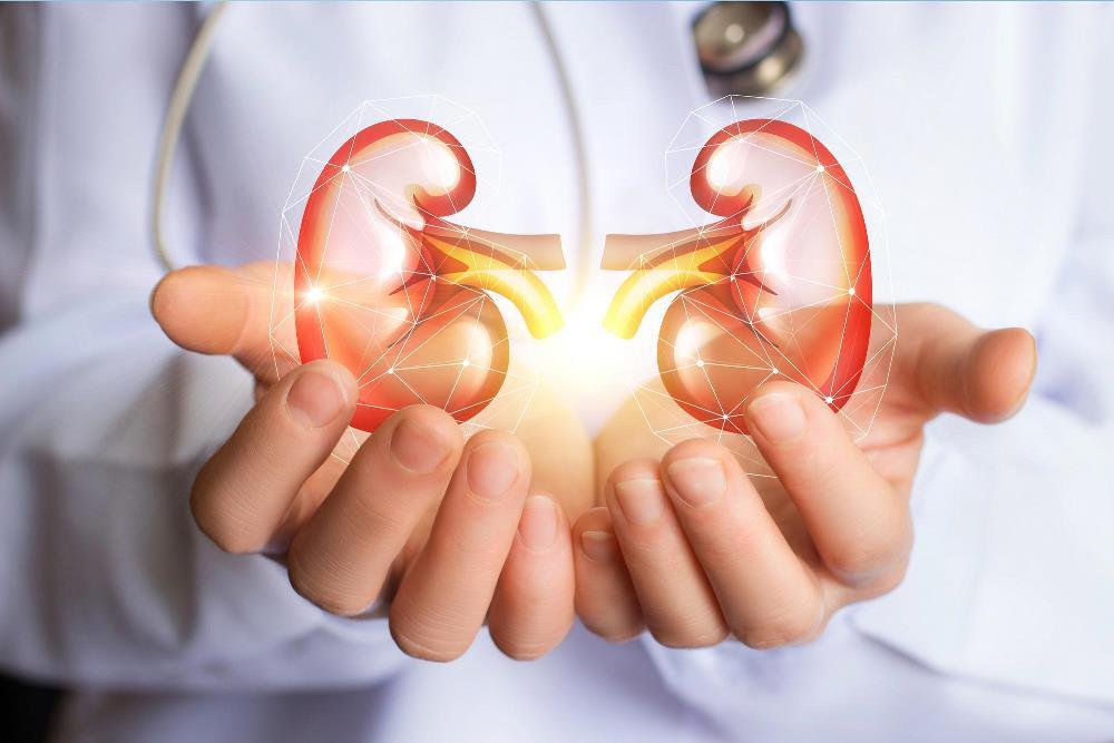 کرونا/ کوويد ۱۹ موجب آسيب جدي به اين عضو بدن مي شود