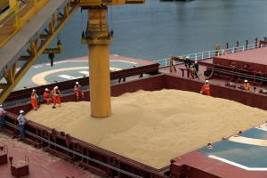 واردات ۷۳۶ هزار تن گندم از بندر امام به کشور