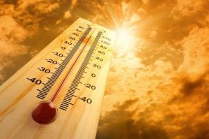 دمای سالانه هوا در مشهد افزایش یافته است