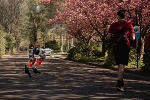 ربات هوش مصنوعی خودش دویدن را یاد گرفت