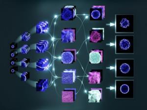 تولید داروهای شخصی سازی شده سرطان با یادگیری ماشین