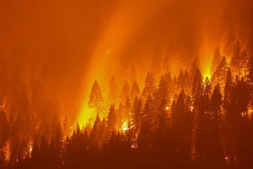 آتش سوزی مهیب جنگلی در ایالت کالیفرنیای آمریکا