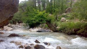 رودخانههای کرج و طالقان در کمین جان گردشگران؛ کنار رودخانهها اتراق نکنید