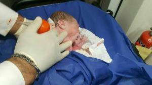نوزادان عجول جاسکی که در آمبولانس متولد شدند