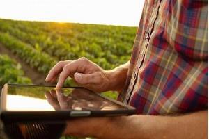 دستیار هوشمند زمین های کشاورزی طراحی شد