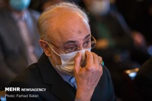صالحی درباره «قانون لغو تحریمها» به کمیسیون اصل ۹۰ گزارش میدهد