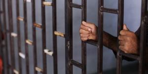 رهایی ۵۱ زندانی از حبس در دهه ولایت