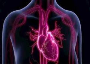 اعتیاد به تریاک و مورفین، چگونه قلب را از کار میاندازد؟