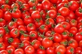 گوجه گيلاسي نخستينبار از بيضا روانه بازار شد