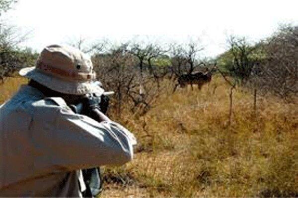 دستگيري يک گروه شکارچي در مهران