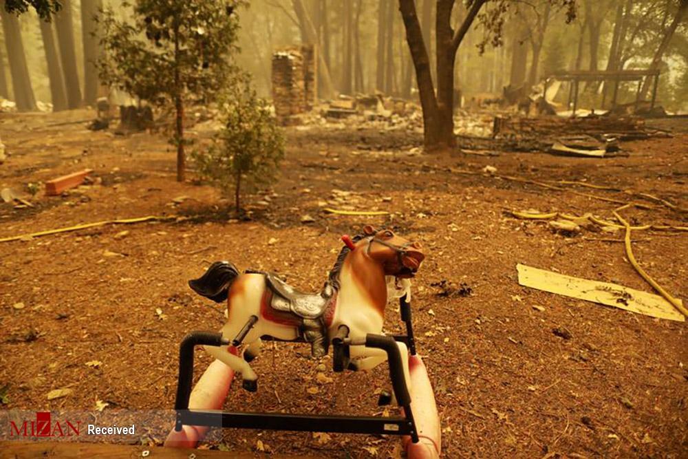 آتش سوزی در منطقه دیسکی شمال کالیفرنیا