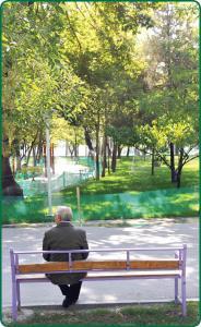 روانشناسی/ چرا سالمندان حوصله دورهمی ندارند؟