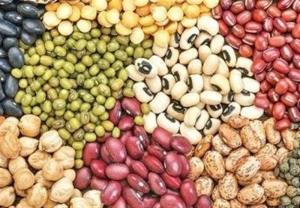 قیمت حبوبات و پروتئین در بیرجند؛ یکشنبه ۱۰ مرداد