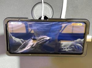 گوشی iQOO 8 اولین دستگاه مجهز به نمایشگر E5 LTPO 2K سامسونگ خواهد بود