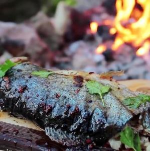 پخت ماهی در طبیعت به روش مامان بزرگ روستایی