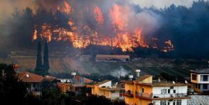 اردوغان: مظنون آتشسوزیها در ترکیه بازداشت شد