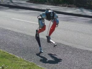 ربات عجیبی که چشم بسته میدود و کالاها را تحویل میدهد