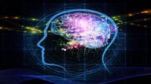 حقایقی جالب و خواندنی درباره مغز انسان که نمیدانستید
