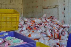 ۱۹۰ تن مرغ روزانه در لرستان تولید میشود