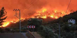 افزایش تلفات آتشسوزی بزرگ ترکیه به ۸ کشته