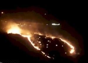مهار آتشسوزی در جنگلهای گچساران