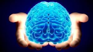 عواملی که باعث کوچک شدن مغز میشوند