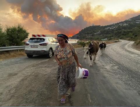 تصاویری از آتش سوزی جنگلی گسترده در ترکیه