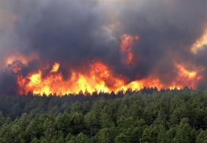 آتشسوزی تنگه «هایقر» جان سه نفر را گرفت