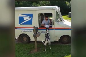ماجرای عجیب یک سگ با پیشنهاد کار از اداره پست آمریکا!