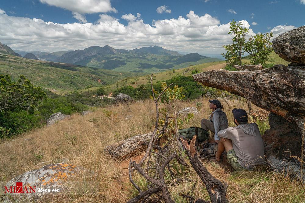 پارک ملی موزامبیک